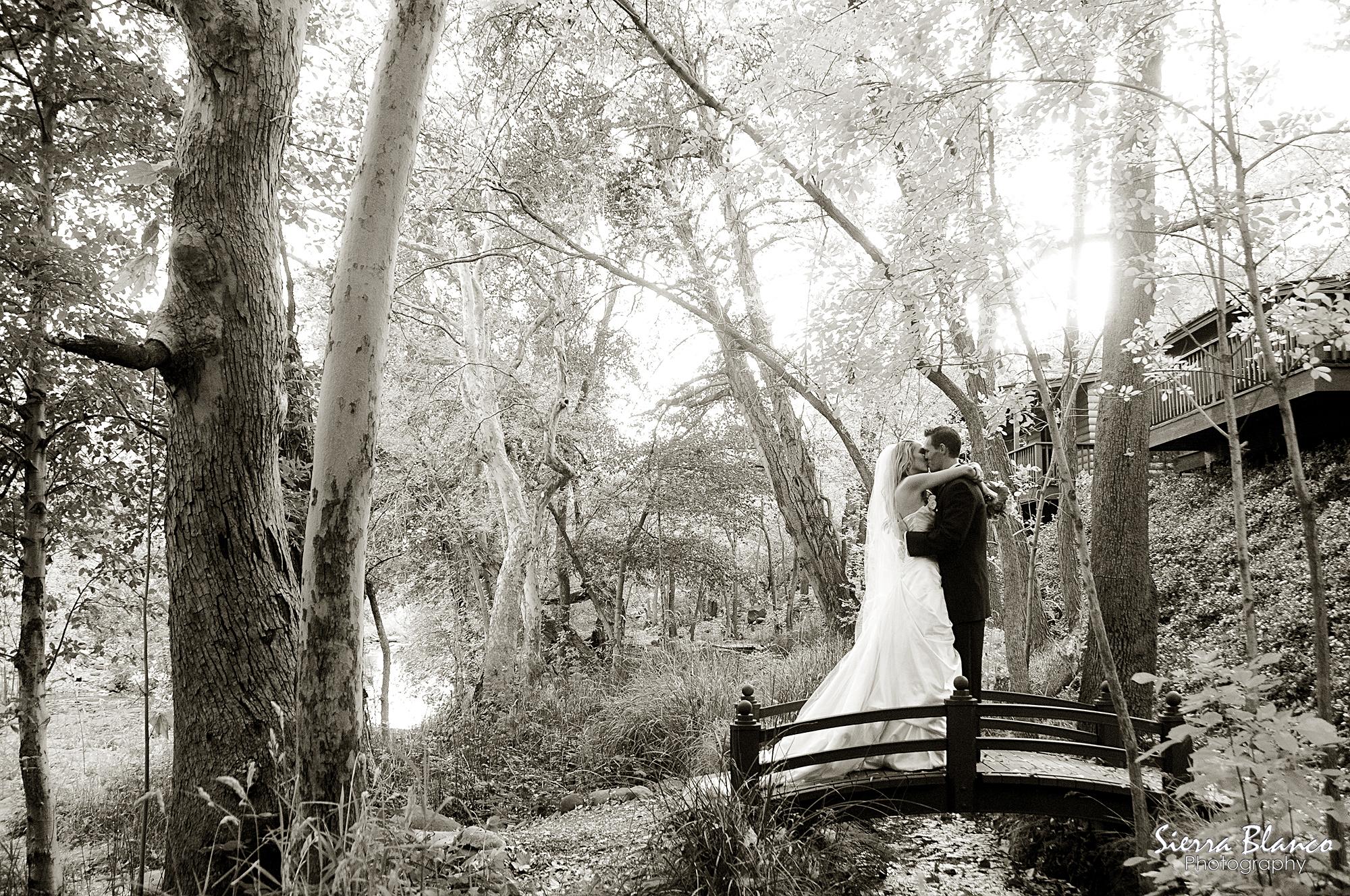 best destination wedding
